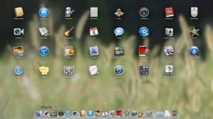Why is my iOS in my OS X?